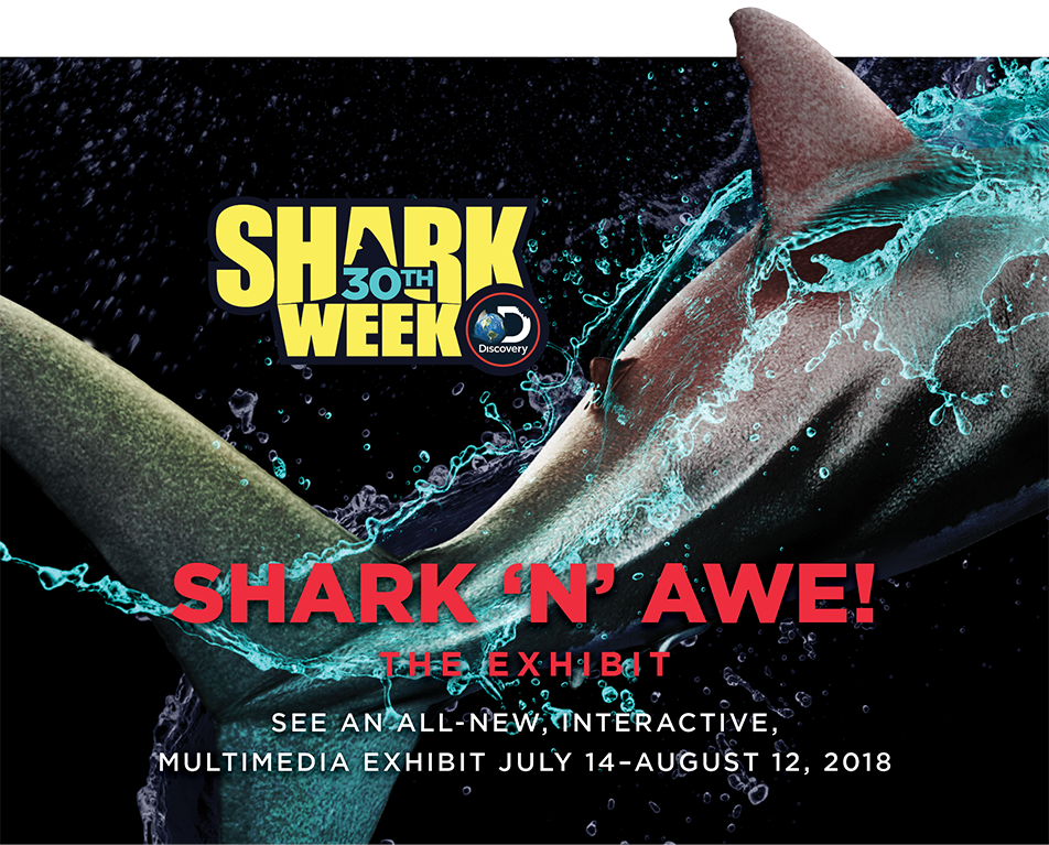 Shark Week: 30 Years of Shark 'N' Awe! The Exhibit | The
