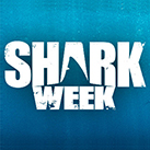 feature-shark-week-si-137x137.jpg