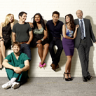 promo-fox-themindyproject-si.png